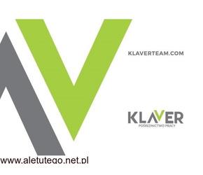 Zbiór szparagów – praca w Holandii od zaraz