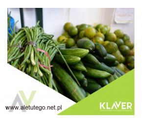 Sortowania warzyw i  owoców, praca bez doświadczenia w Holandii-Westland!!!